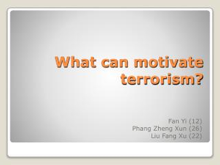 What can motivate terrorism?
