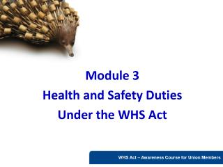 Module 3 Health and Safety Duties Under the WHS Act