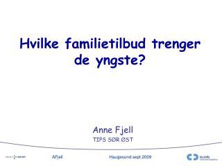 Hvilke familietilbud trenger de yngste?