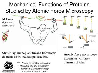 Mechanical Functions of Proteins Studied by Atomic Force Microscopy