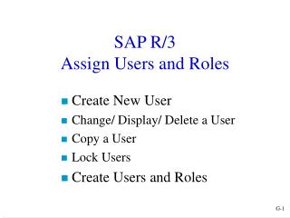 SAP R/3 Assign Users and Roles
