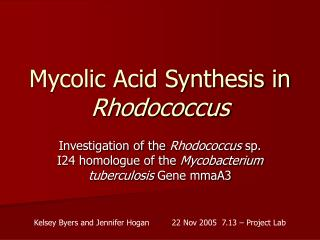 Mycolic Acid Synthesis in  Rhodococcus