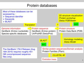 Genome information GenBank (Entrez nucleotide) Species-specific databases