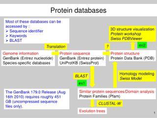 Genome information GenBank (Entrez nucleotide) Species-specific databases