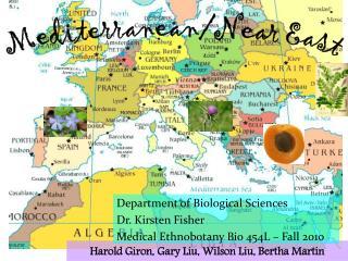 Mediterranean/Near East