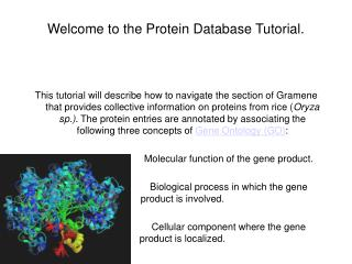 Welcome to the Protein Database Tutorial.