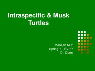 Intraspecific & Musk Turtles