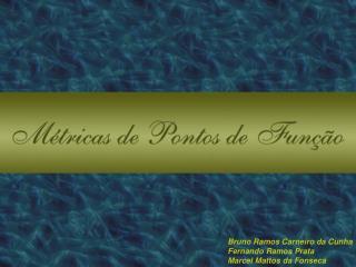 Bruno Ramos Carneiro da Cunha Fernando Ramos Prata Marcel Mattos da Fonseca