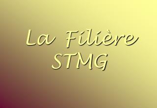 La  Filière STMG