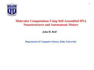 Molecular Computations Using Self-Assembled DNA Nanostructures and Autonomous Motors