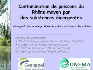 Contamination de poissons du Rhône moyen par des substances émergentes