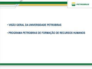 VISÃO GERAL DA UNIVERSIDADE PETROBRAS  PROGRAMA PETROBRAS DE FORMAÇÃO DE RECURSOS HUMANOS
