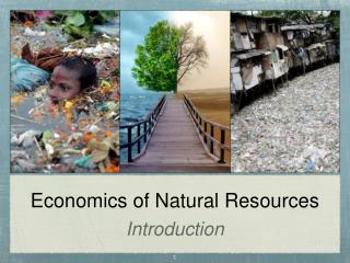 Economics of Natural Resources