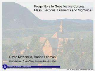 Progenitors to Geoeffective Coronal Mass Ejections: Filaments and Sigmoids