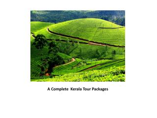 Complete Kerala Tour Packages