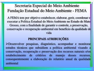 Secretaria Especial do Meio Ambiente Fundação Estadual do Meio Ambiente - FEMA