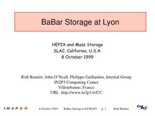 BaBar Storage at Lyon
