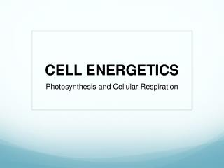 CELL ENERGETICS