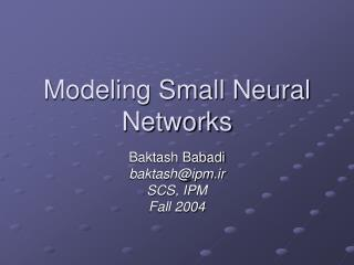 Modeling Small Neural Networks
