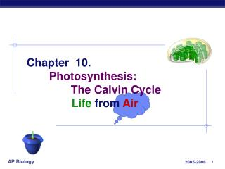 Chapter  10. Photosynthesis: 	       The Calvin Cycle  		Life from Air