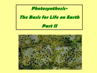 Photosynthesis- The Basis for Life on Earth Part II