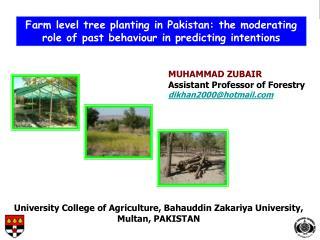MUHAMMAD ZUBAIR Assistant Professor of Forestry dikhan2000@hotmail