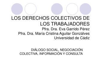 DIÁLOGO SOCIAL, NEGOCIACIÓN COLECTIVA, INFORMACIÓN Y CONSULTA
