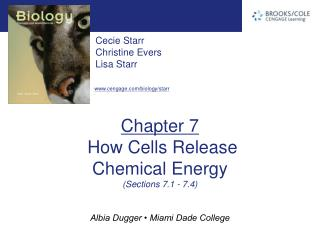 Chapter 7  How Cells Release  Chemical Energy (Sections 7.1 - 7.4)