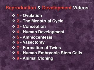 Reproduction & Development  Videos