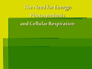 The Need for Energy: Photosynthesis  and Cellular Respiration