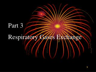 Part 3   Respiratory Gases Exchange