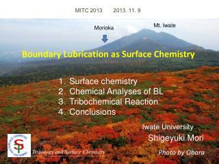 MITC 2013 2013. 11. 9