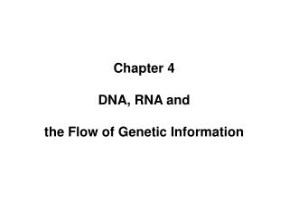 Chapter 4 DNA, RNA and the Flow of Genetic Information