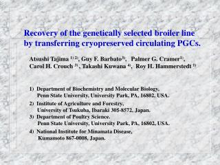 Recovery of the genetically selected broiler line