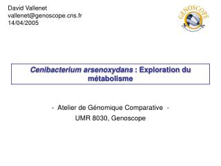 Cenibacterium arsenoxydans  : Exploration du métabolisme