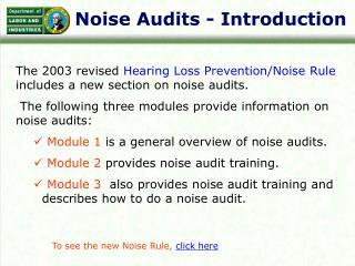 Noise Audits - Introduction