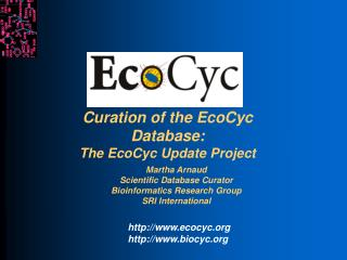 Curation of the EcoCyc Database: The EcoCyc Update Project