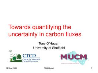 Towards quantifying the uncertainty in carbon fluxes