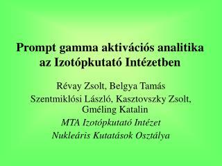 Prompt gamma aktiv ációs analitika az Izotópkutató Intézetben