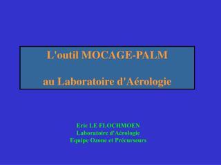 L'outil MOCAGE-PALM au Laboratoire d'Aérologie