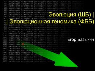 Эволюция (ШБ)  |  |  Эволюционная геномика (ФББ)