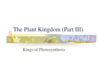 The Plant Kingdom (Part III)