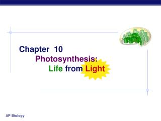 Chapter  10 Photosynthesis: Life from Light
