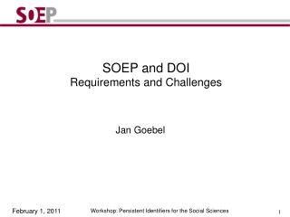 SOEP and DOI Requirements and Challenges