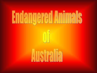 Endangered Animals of  Australia