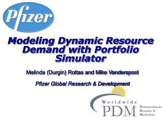 Modeling Dynamic Resource Demand with Portfolio Simulator