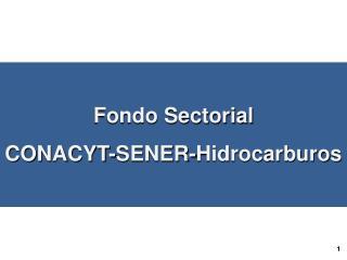 Fondo Sectorial  CONACYT-SENER-Hidrocarburos