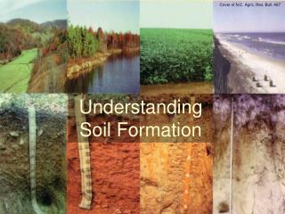 Understanding Soil Formation