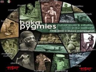 """"""" pygmy """""""