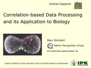 Correlation-based Data Processing and its Application to Biology